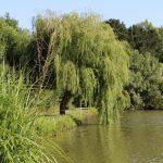 Les Hauts d'Anjou